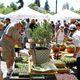 Petaluma's 16th Annual Art & Garden Festival