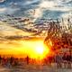 The Burn Starts Here: Cultural & Etiquette Preparedness