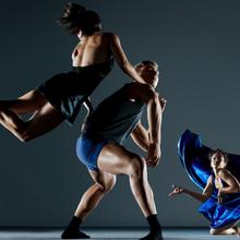 ODC/Dance Summer Sampler