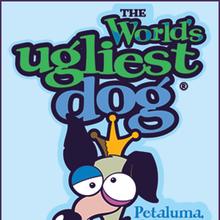 The World's Ugliest Dog Contest