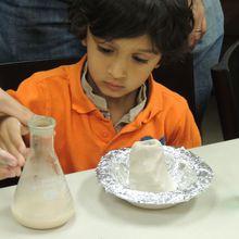 Saturday Science - Drop-in Workshops