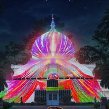 Nightly Illuminated Scenes in Golden Gate Park Inspired by the Rare Tropical Flowers