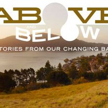 Above and Below: Stories From Our Changing Bay