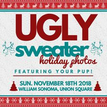 Ugly Sweater Holiday Photos With Your Pup!