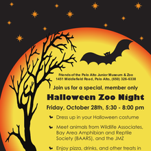 Halloween Zoo Night!