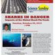 "Science Sundays: ""Sharks in Danger - Impacts of the Global Shark Fin Trade"""