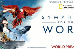 National Geographic: Sympho...