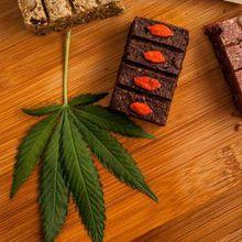 Holiday Cannabis Gift Fair