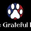 The Grateful Dog image