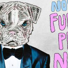 """Furry Prom Night"""
