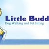 Little Buddhas Dog Walking & Pet Sitting image