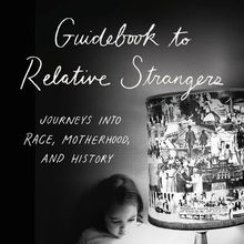 Camille T. Dungy: Guidebook to Relative Strangers