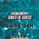 Shiba San Pool Party