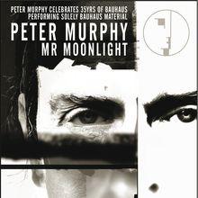 Peter Murphy Celebrates 35 Years of Bauhaus