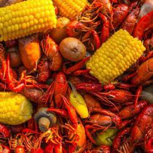 Louisiana Crawfish Boil + Wine and Cider Throw Down - Part Trois