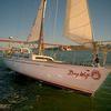 San Francisco Sailing Charters image