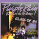 Prince Night    & tribute to Purple Rain