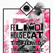 Felix Da Housecat, Todd Edwards, Tornado Wallace