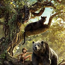 Music & Movies Under the Stars: The Jungle Book