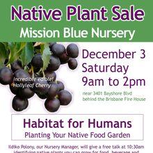 Mission Blue Nursery Native Plant Sale