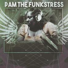 Pam the Funkstress Memorial Show