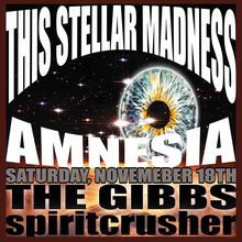 This Stellar Madness, The Gibbs and Spiritcrusher at Amnesia