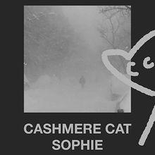 Cashmere Cat, Sophie, DJ Dials
