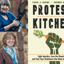 CAROL J. ADAMS & VIRGINIA MESSINA at Books Inc. Berkeley