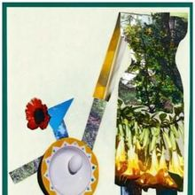 Interactive Collage Workshop with the Rockridge Community Photography Group