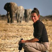 Caitlin O'Connell: The Secret Lives of Elephants