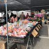 Alemany Market Plaza image