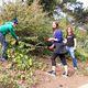 Interfaith Garden Beautification