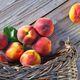 Stone Fruit Celebration
