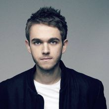 Frost Music & Arts Festival with Zedd