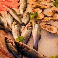 A Seafood Beauty