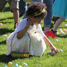 Kelly Park Egg Hunt