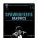 SPAWNBREEZIE & Bayonics