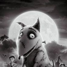 Zoovie Night - Frankenweenie