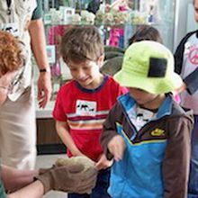 Zoo Kids:  Harvesters & Hibernators