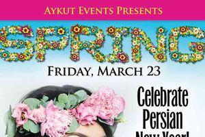 Spring Party / Celebrating ...