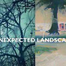 Unexpected Landscapes
