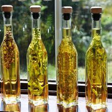 Wine From Honey: Making Mead, Metheglin & Melomel