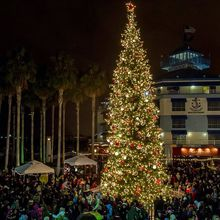 Jack London Square Annual Tree Lighting Ceremony