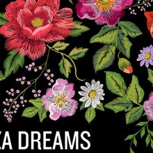 Danza Dreams 2017 Showcase
