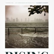 Elizabeth Rush: Rising - dispatches from the new American shore