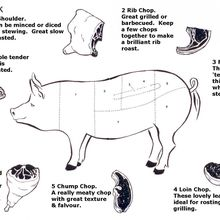 Wild Boar Wine Pairing Dinner