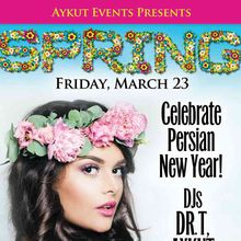Spring Party / Celebrating Persian New YEAR