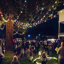Holiday Lights: The Presidio's Traditional Tree-Lighting Ceremony
