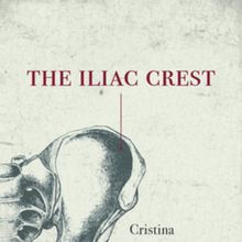 Cristina Rivera Garza: The Iliac Crest (with Mauro Javier Cardenas)