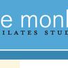 Agile Monkey image